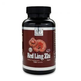MV Herbs Red Lingzhi